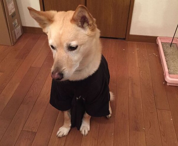 unspecified-2